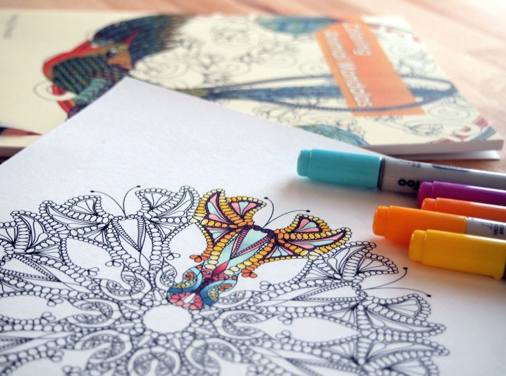 how to use and color adult coloring books - Book Pictures To Color
